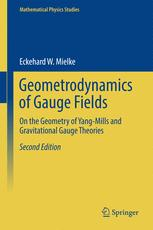 Geometrodynamics of Gauge Fields
