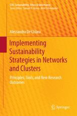 Implementing Sustainability Strategies in Networks and Clusters