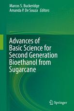 Advances of Basic Science for Second Generation Bioethanol from Sugarcane