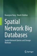 Spatial Network Big Databases