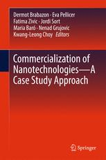Introduction—The Current Status and Momentum in Nanotechnology Commercialisation