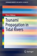 Tsunami Propagation in Tidal Rivers