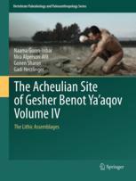 The Acheulian Site of Gesher Benot Ya'aqov Volume IV