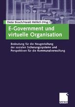 E-Government und virtuelle Organisation