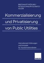 Kommerzialisierung und Privatisierung von Public Utilities