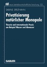 Privatisierung natürlicher Monopole