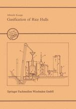 Gasification of Rice Hulls