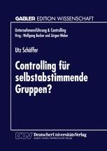 Controlling für selbstabstimmende Gruppen?