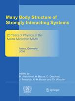 Many Body Structure of Strongly Interacting Systems