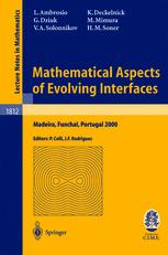 Mathematical Aspects of Evolving Interfaces