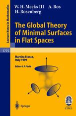 The Global Theory of Minimal Surfaces in Flat Spaces