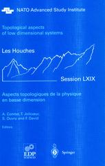 Aspects topologiques de la physique en basse dimension. Topological aspects of low dimensional systems