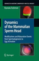 Dynamics of the Mammalian Sperm Head