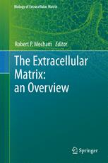 The Extracellular Matrix: an Overview