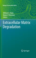 Extracellular Matrix Degradation