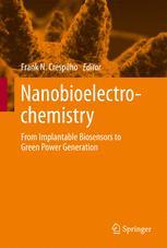 Nanobioelectrochemistry