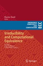 Irreducibility and Computational Equivalence
