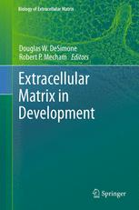 Extracellular Matrix in Development