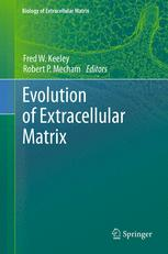 Evolution of Extracellular Matrix
