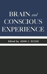 Brain and Conscious Experience