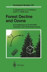 Forest Decline and Ozone