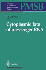 Cytoplasmic fate of messenger RNA