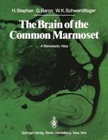 The Brain of the Common Marmoset (Callithrix jacchus)