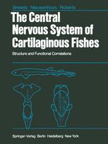 The Central Nervous System of Cartilaginous Fishes