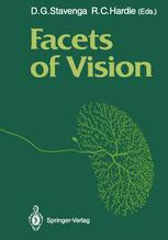 Facets of Vision