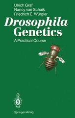 Drosophila Genetics
