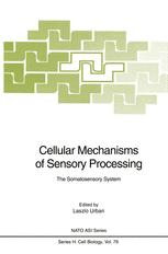 Cellular Mechanisms of Sensory Processing