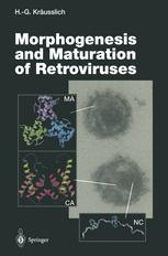 Morphogenesis and Maturation of Retroviruses