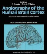 Angiography of the Human Brain Cortex