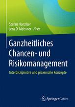 Erfolgskriterien von Enterprise Risk Management in der praktischen Umsetzung