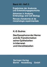 Das Epoophoron der Henne und die Transformation seiner Epithelzellen in Interrenal- und Interstitialzellen