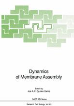 Dynamics of Membrane Assembly