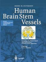 Human Brain Stem Vessels