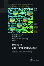 Interface and Transport Dynamics