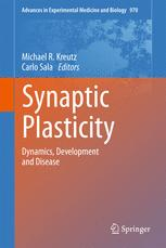 Synaptic Plasticity