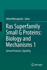 Ras Superfamily Small G Proteins: Biology and Mechanisms 1