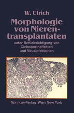 Morphologie von Nierentransplantaten