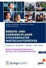 Berufs- und Karriere-Planer Steuerberater Wirtschaftsprüfer