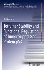 Tetramer Stability and Functional Regulation of Tumor Suppressor Protein p53