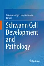 Schwann Cell Development and Pathology