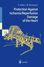 Protection Against Ischemia/Reperfusion Damage of the Heart