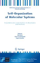 SelfOrganization of Molecular Systems