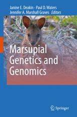 Marsupial Genetics and Genomics
