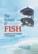 The Senses of Fish