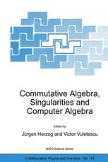 Commutative Algebra, Singularities and Computer Algebra