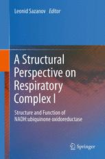 A Structural Perspective on Respiratory Complex I